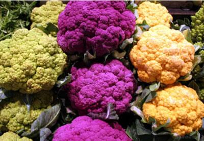 choux-fleurs-colorés-Flickr-cherster29